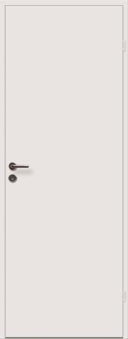 Doors Flush smooth 10x21