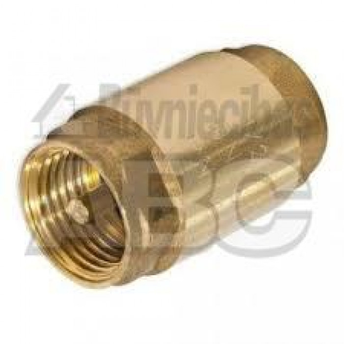 "Check valve with brass valve 1"""