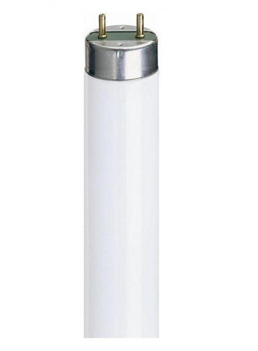 OSRAM LUMILUX 18W 1350LM 3000K T-8 Tubular fluorescent lamps 26 mm, with G13 bases