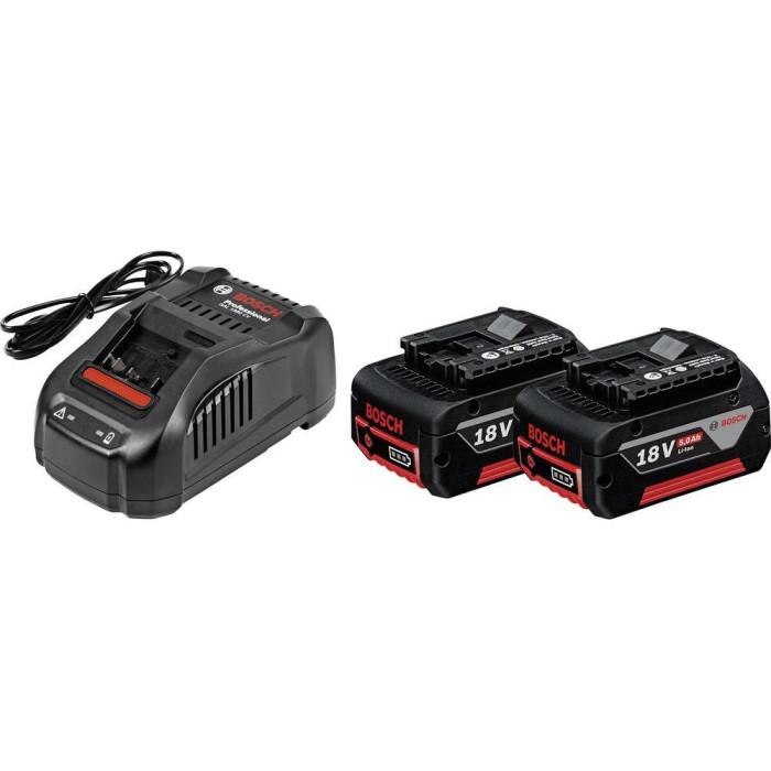 Tool battery Bosch Professional GBA 18 V-Li 2x5.0 Ah 1600A00B8J