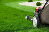 A lawn seed mixture M1- PARTER 1kg