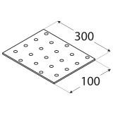SAVIENOJUMU PLATE  300x100x2.0 mm
