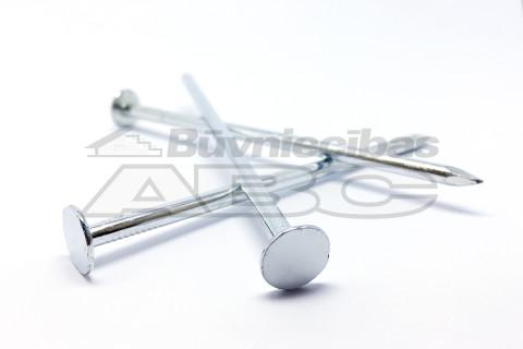 Naglas šīfera 4.0x100mm Zn  1kg/iep